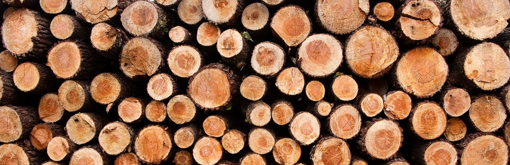 Energieverbund Eschenbach AG, Fernwärme mit Holz